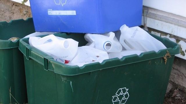 damoiselle_recycling-bins-650x360